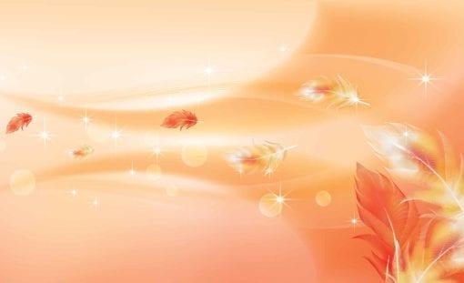 Fototapet med motivet: Orange Rosa abstrakt Fjädrar