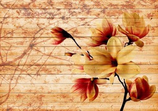 Fototapet med motivet: Orange blommor Trä