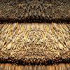 Fototapet med motivet: Stå Natur Textur