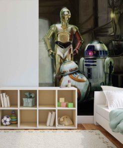 Fototapet med motivet: Star Wars Droids