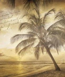 Fototapet med motivet: Strand Palmer Sepia Vintage