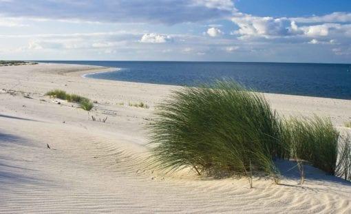 Fototapet med motivet: Sylt Strand Hav Sand