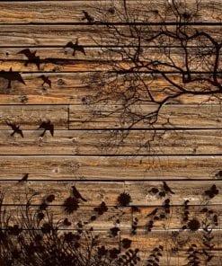 Fototapet med motivet: Träd Fåglar Board Träen