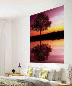 Fototapet med motivet: Träd Sjö reflektion solnedgång Natur