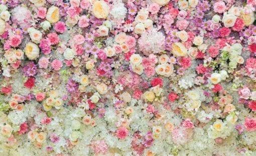Fototapet med motivet: Vackra blommor pastellfärger