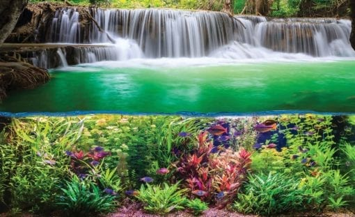 Fototapet med motivet: Vattenfall Djungel Natur