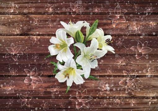 Fototapet med motivet: Vita blommor Trä