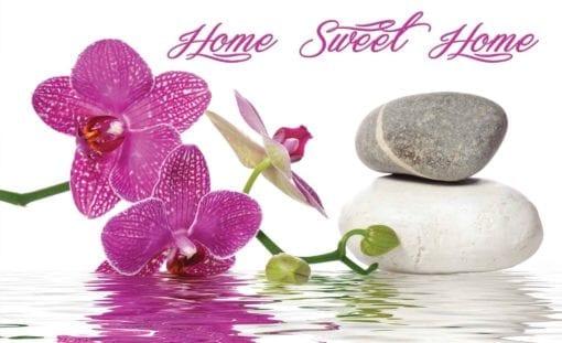 Fototapet med motivet: Zen Orkidéer Blommor Stenar Vatten