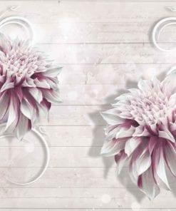 Fototapet med motivet: blomma Vit