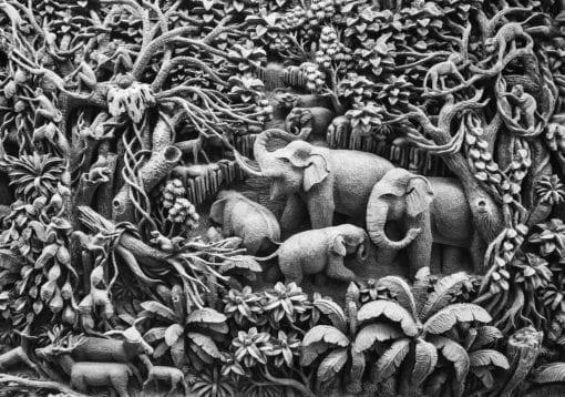 Fototapet med motivet: elefanter Djungel
