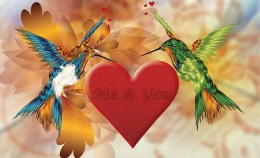Fototapet med motivet: kolibri Hjärta Abstrakt