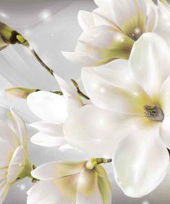 Fototapet med motivet: vita blommor